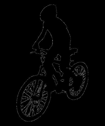 Bike Check-up Day